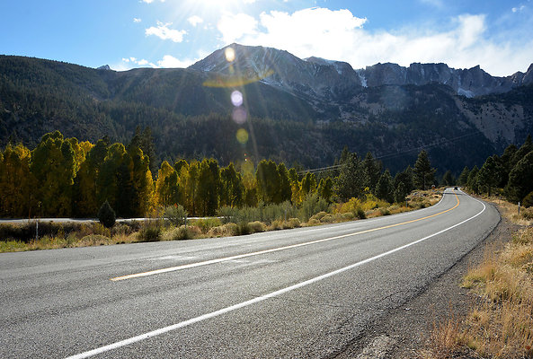 Road Trip  105