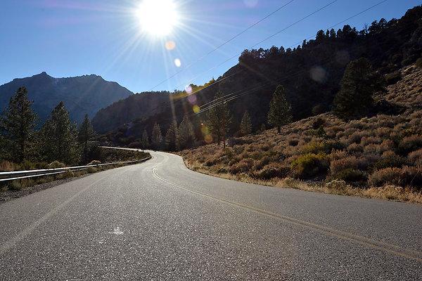 Road Trip  106